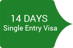14 day single entry visa
